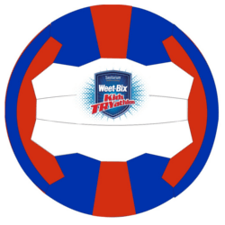 Try Netball