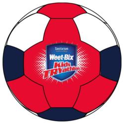 TRY Soccer Ball